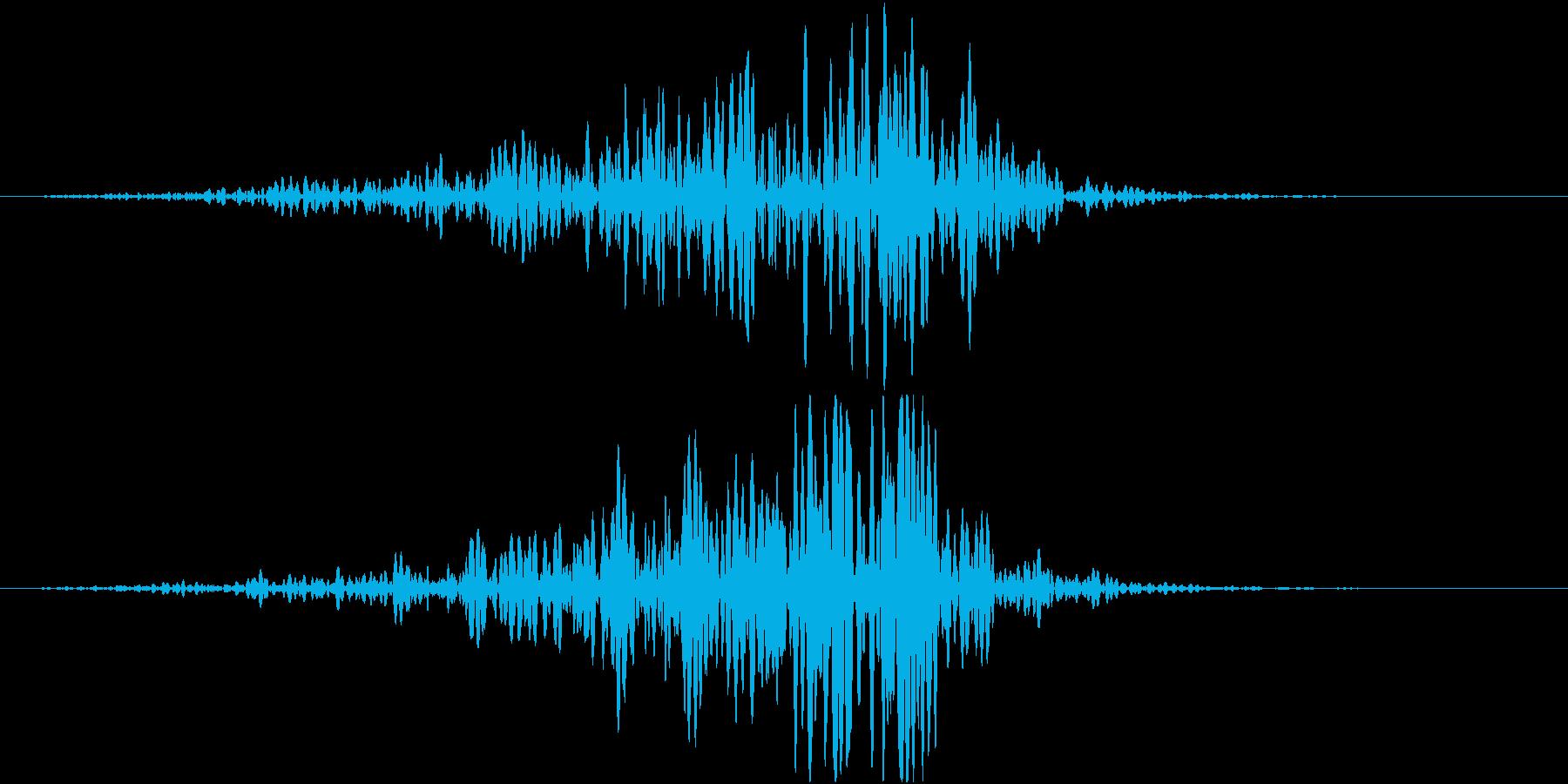 フォンオンオンオン(接近、余韻無し)の再生済みの波形