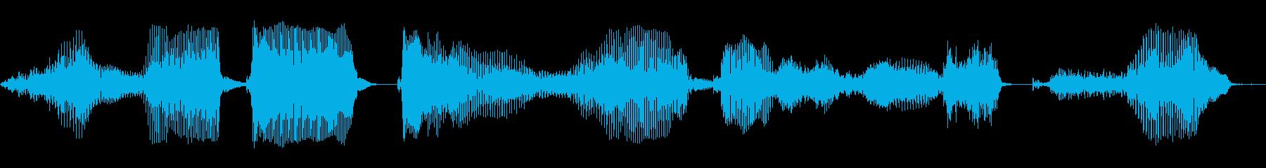 このデータをロードしますか?の再生済みの波形