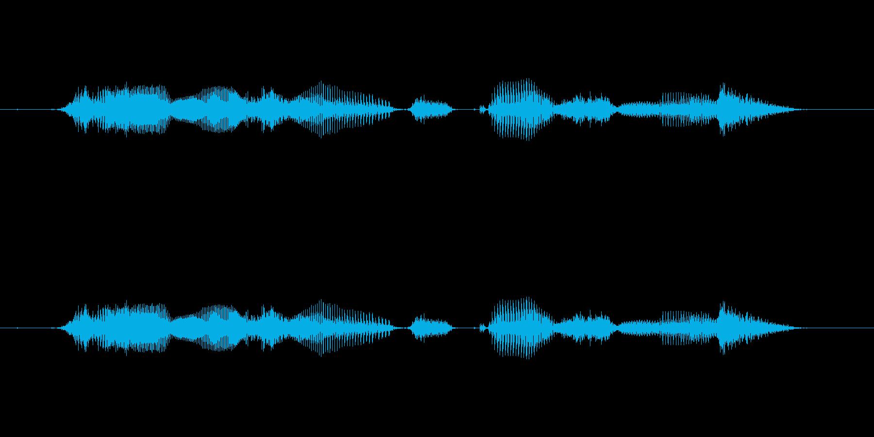 【時報・時間】12時をお伝えしますの再生済みの波形