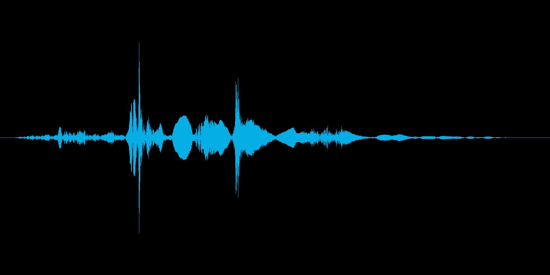 ペラッ(本をめくる音)の再生済みの波形