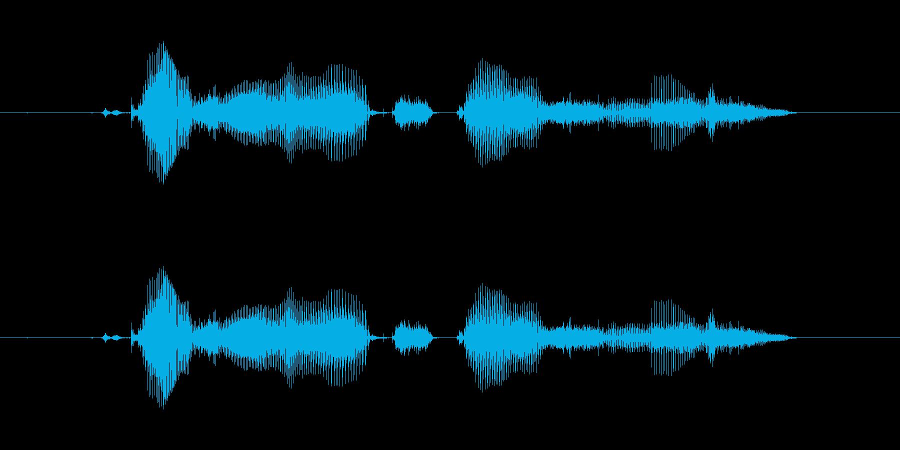 【時報・時間】5時をお伝えしますの再生済みの波形