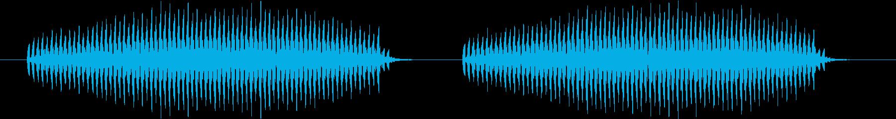 キリキリキリキリというシンセ音(虫)の再生済みの波形