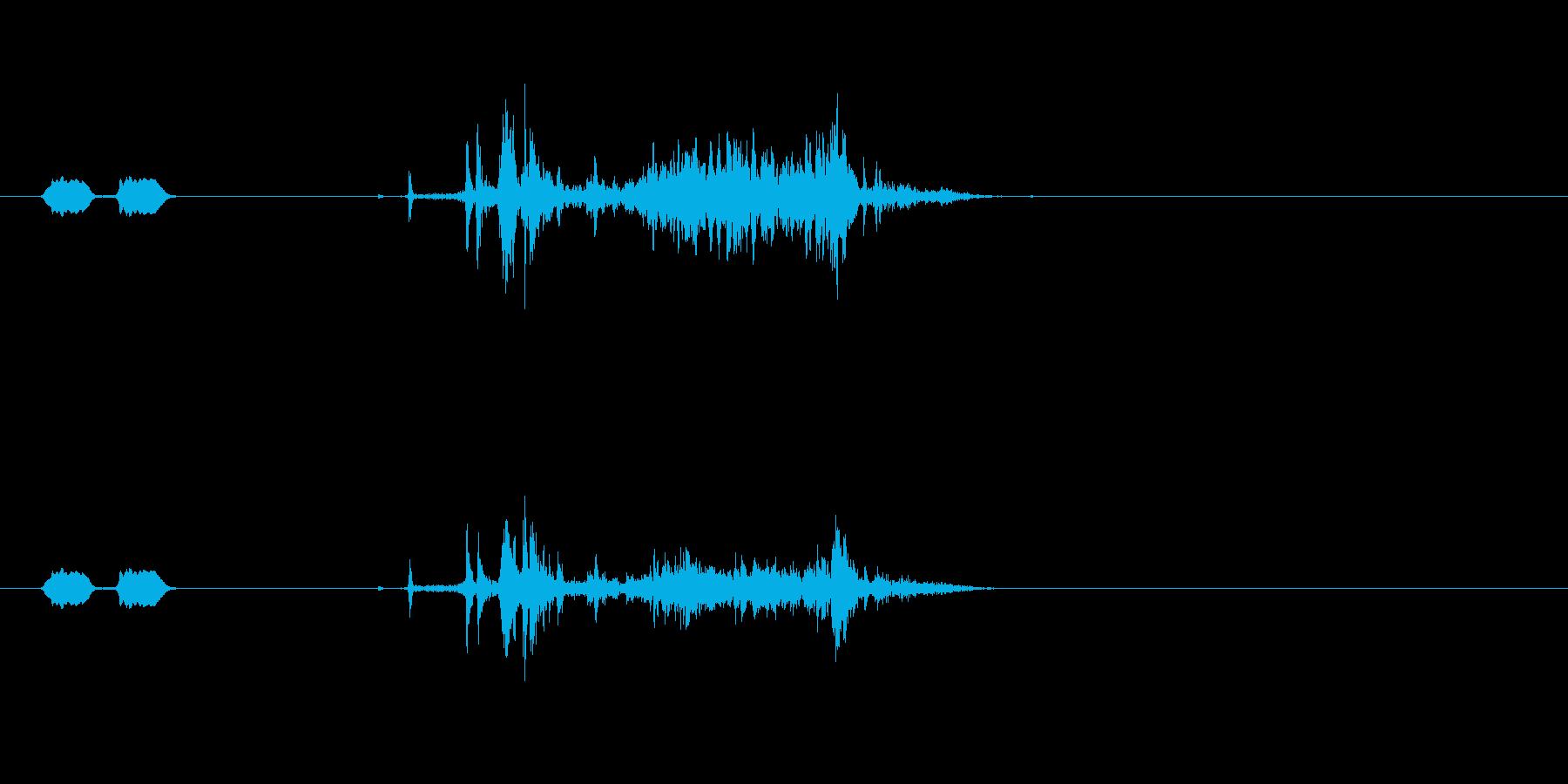 携帯カメラ (ピピッ…カシャ)の再生済みの波形