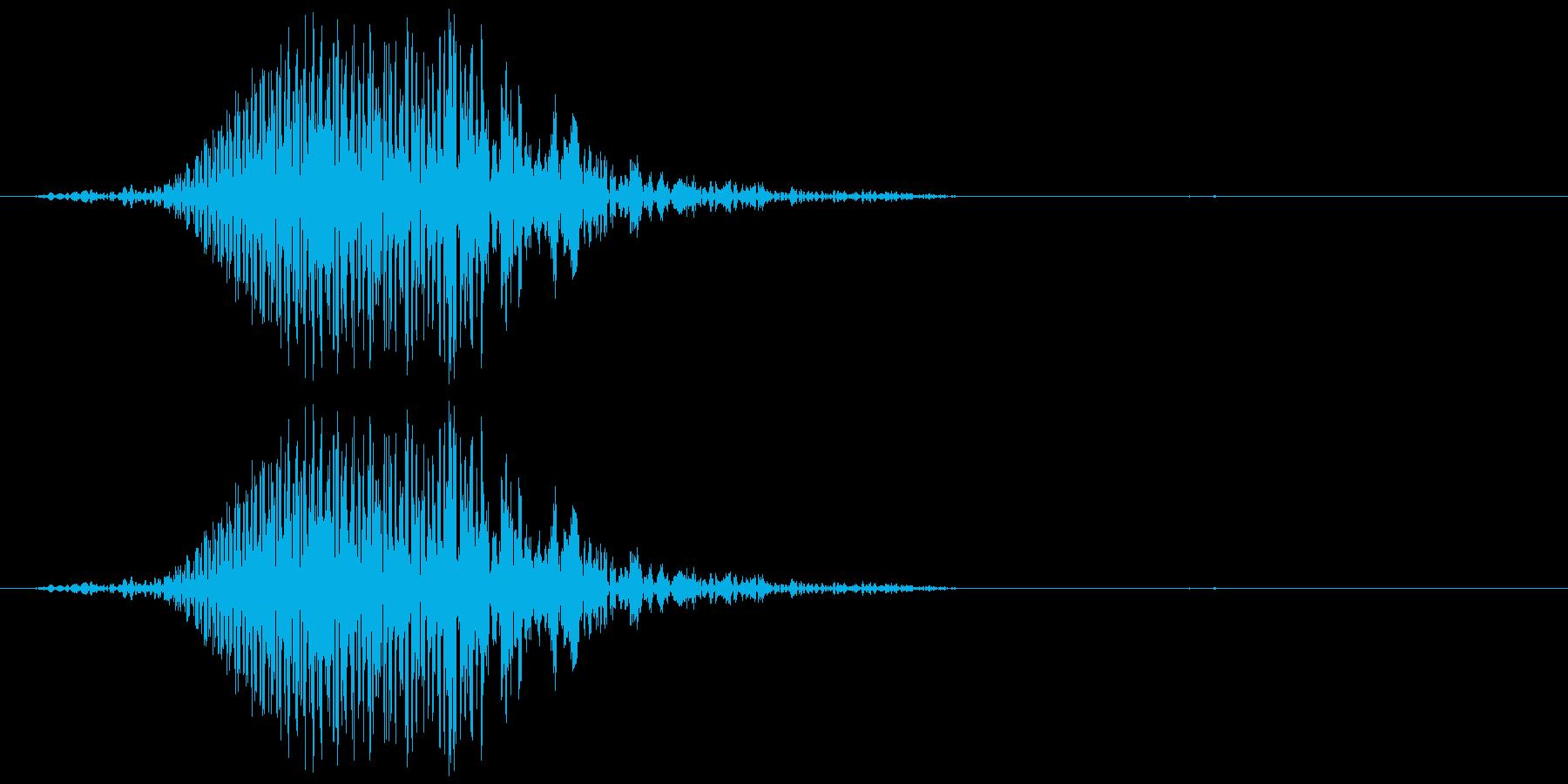 犬の鳴き声 1回吠える 中型犬 大型犬の再生済みの波形