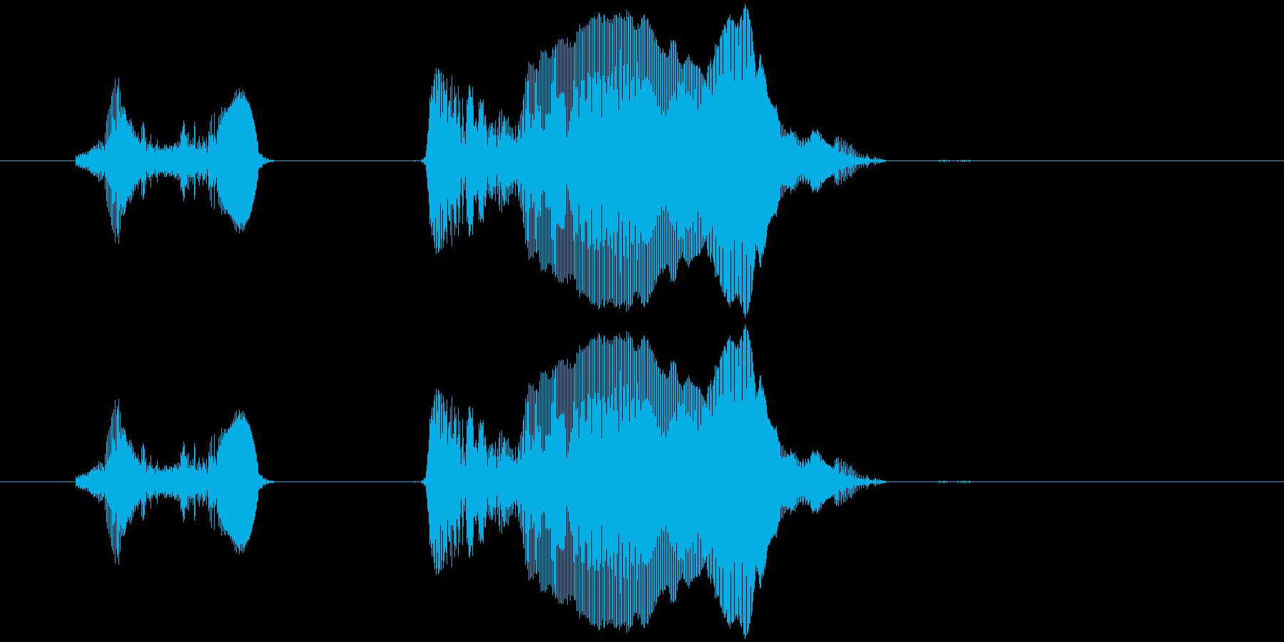 いった〜い!の再生済みの波形