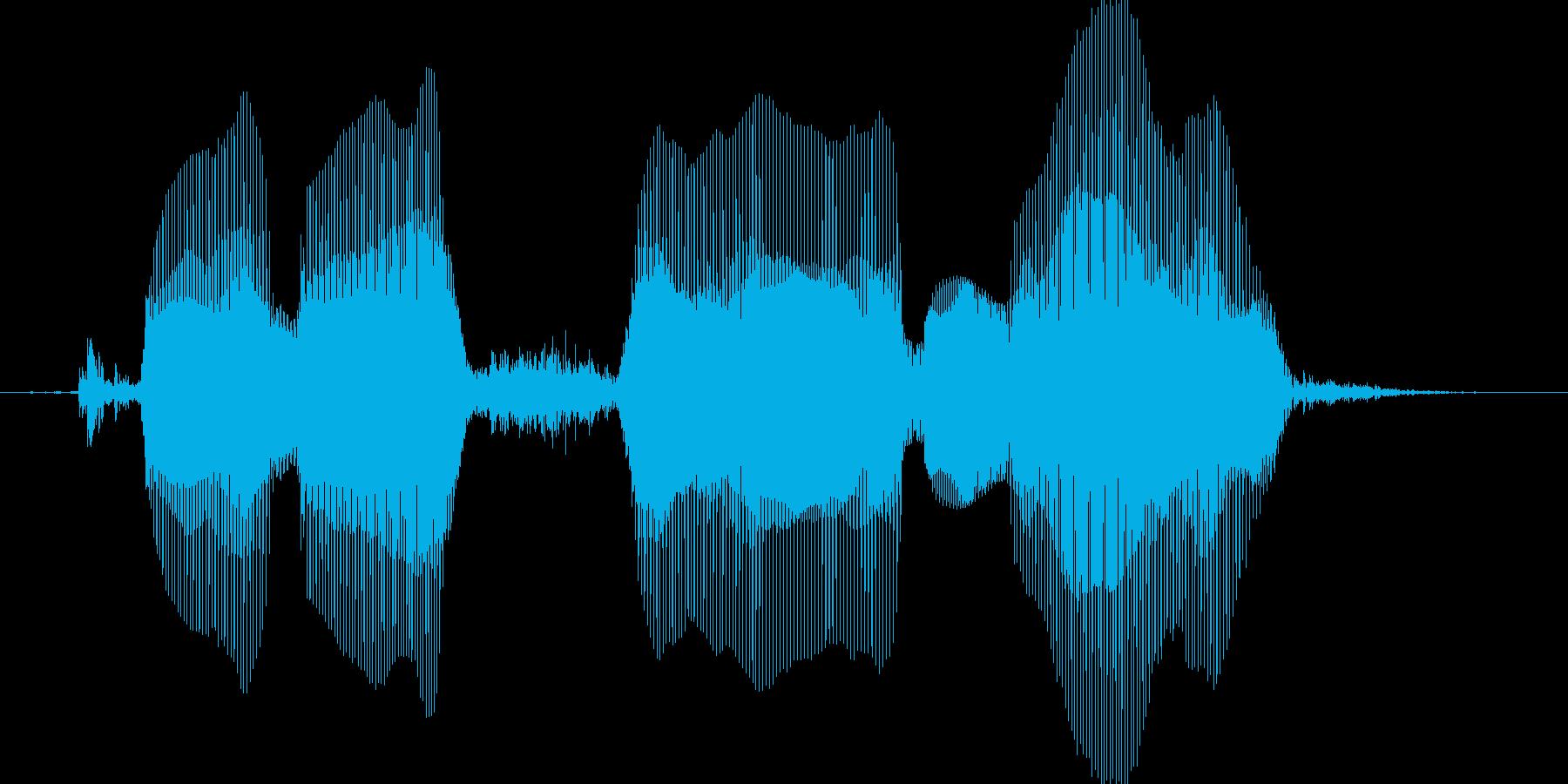 くるしゅうないの再生済みの波形