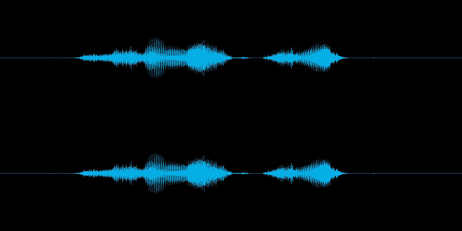 【月】4月の再生済みの波形