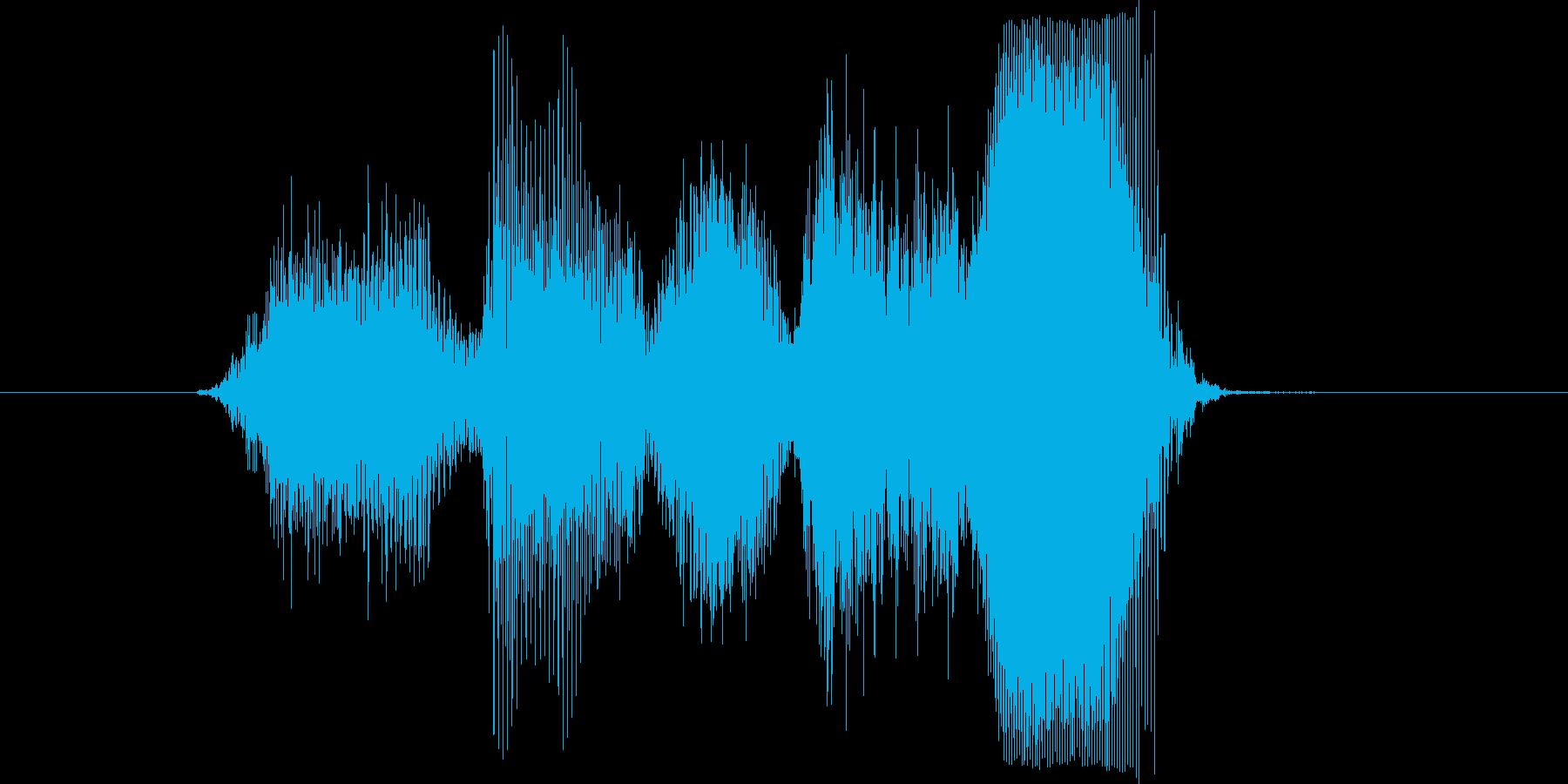 「素晴らしい」の再生済みの波形