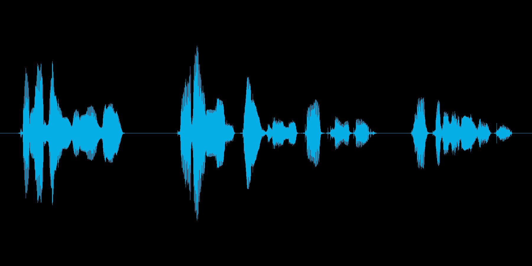 ご覧のスポンサーの提供でお送りしましたの再生済みの波形