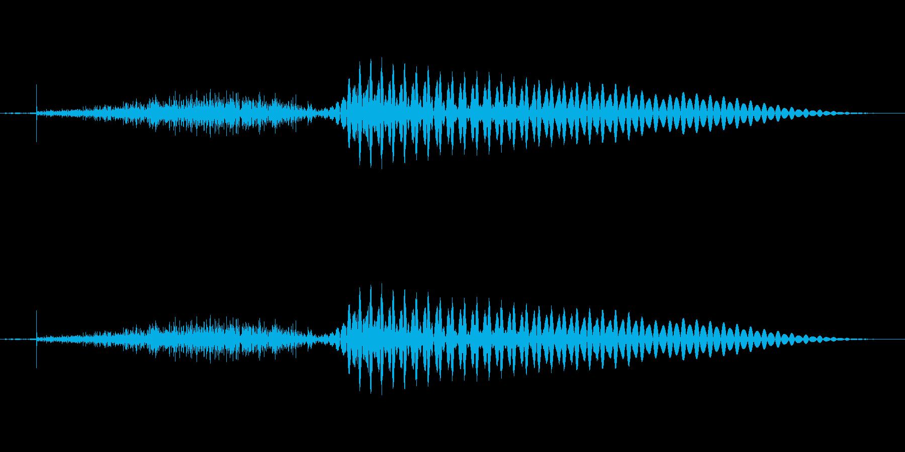 (女性)ドイツ語 数字10(十)ツェーンの再生済みの波形