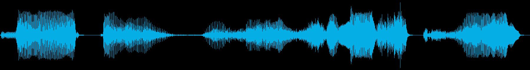 データを保存しますか?の再生済みの波形