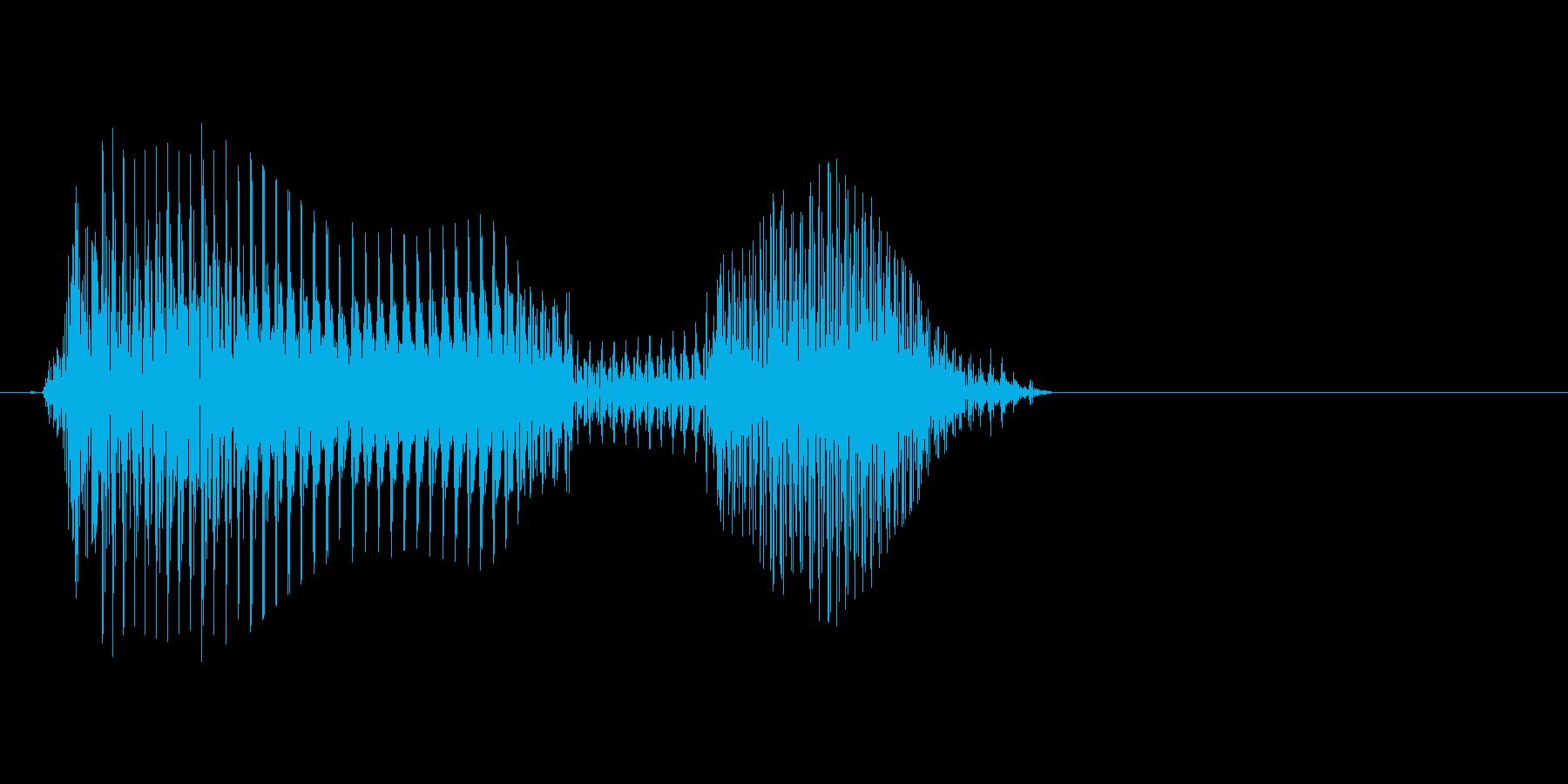 ダメの再生済みの波形