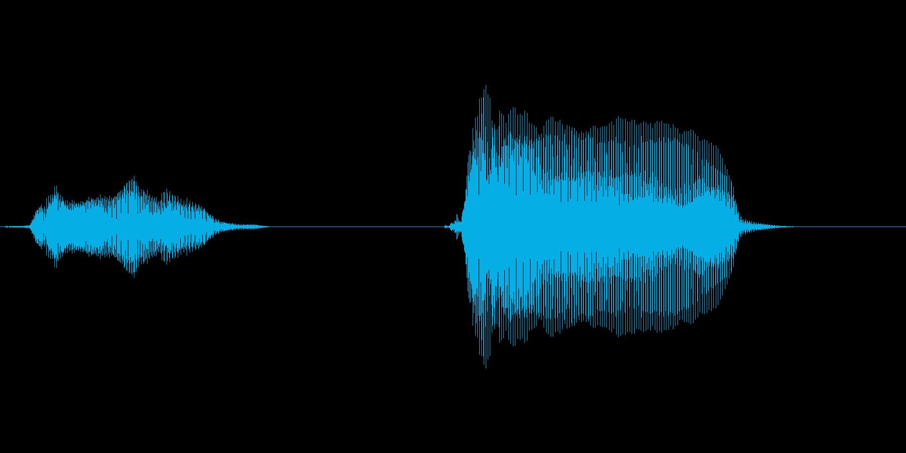 いった!(ダメージ)の再生済みの波形