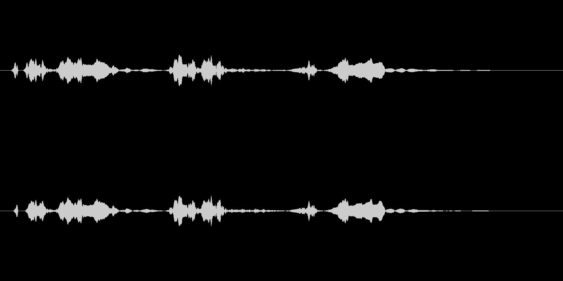 ピーピヨ♪大瑠璃、おおるりの鳴き声01 の未再生の波形