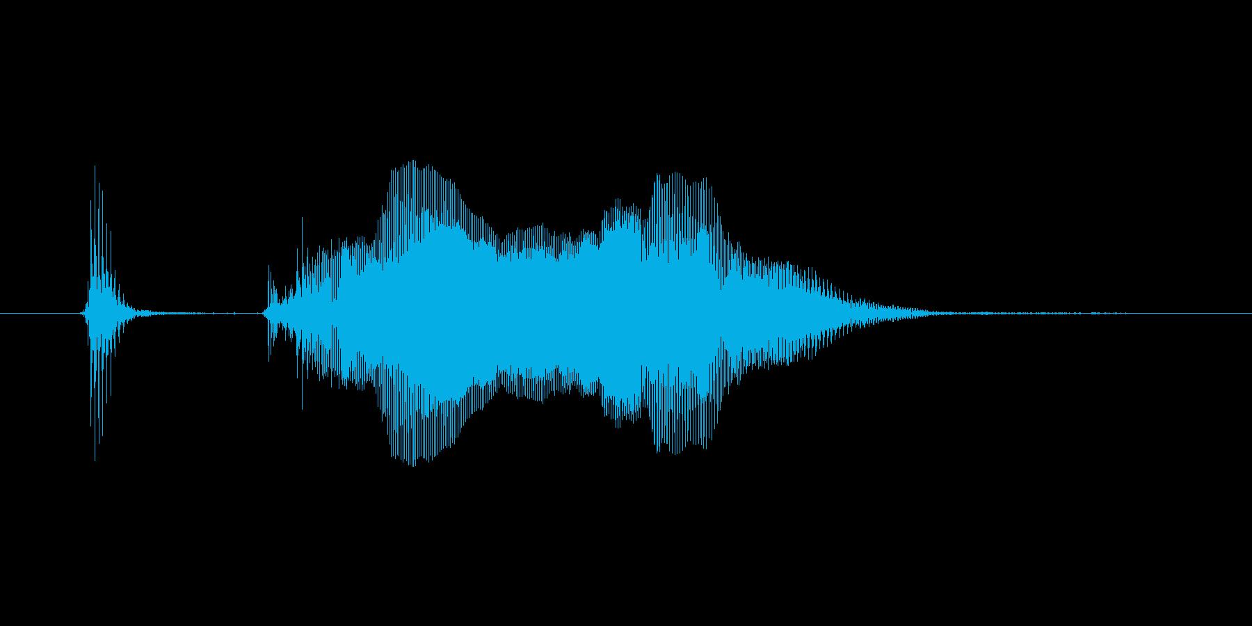 【ボイスSE】ばきゅーん!の再生済みの波形