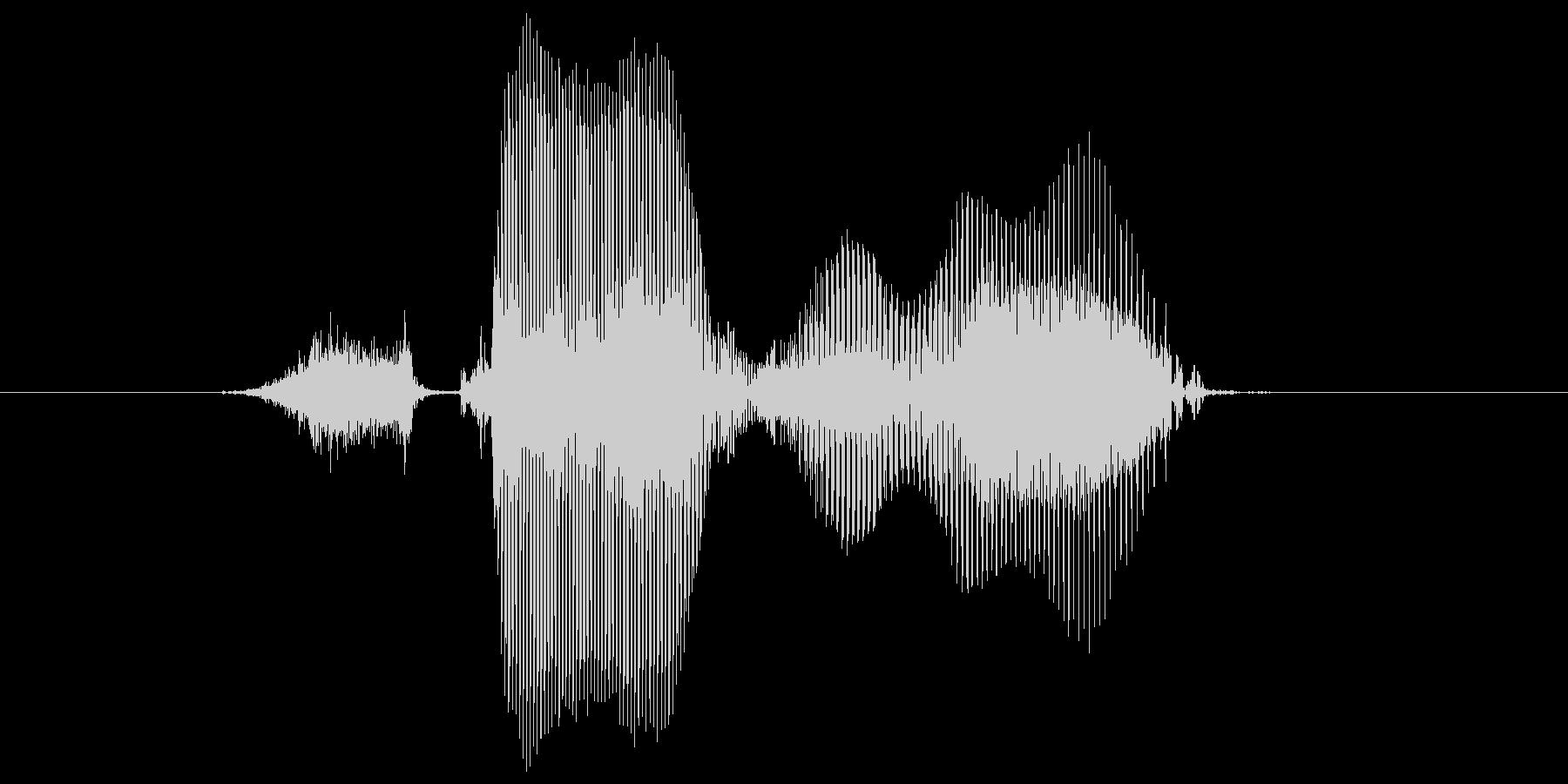 ステージ1(わん)の未再生の波形