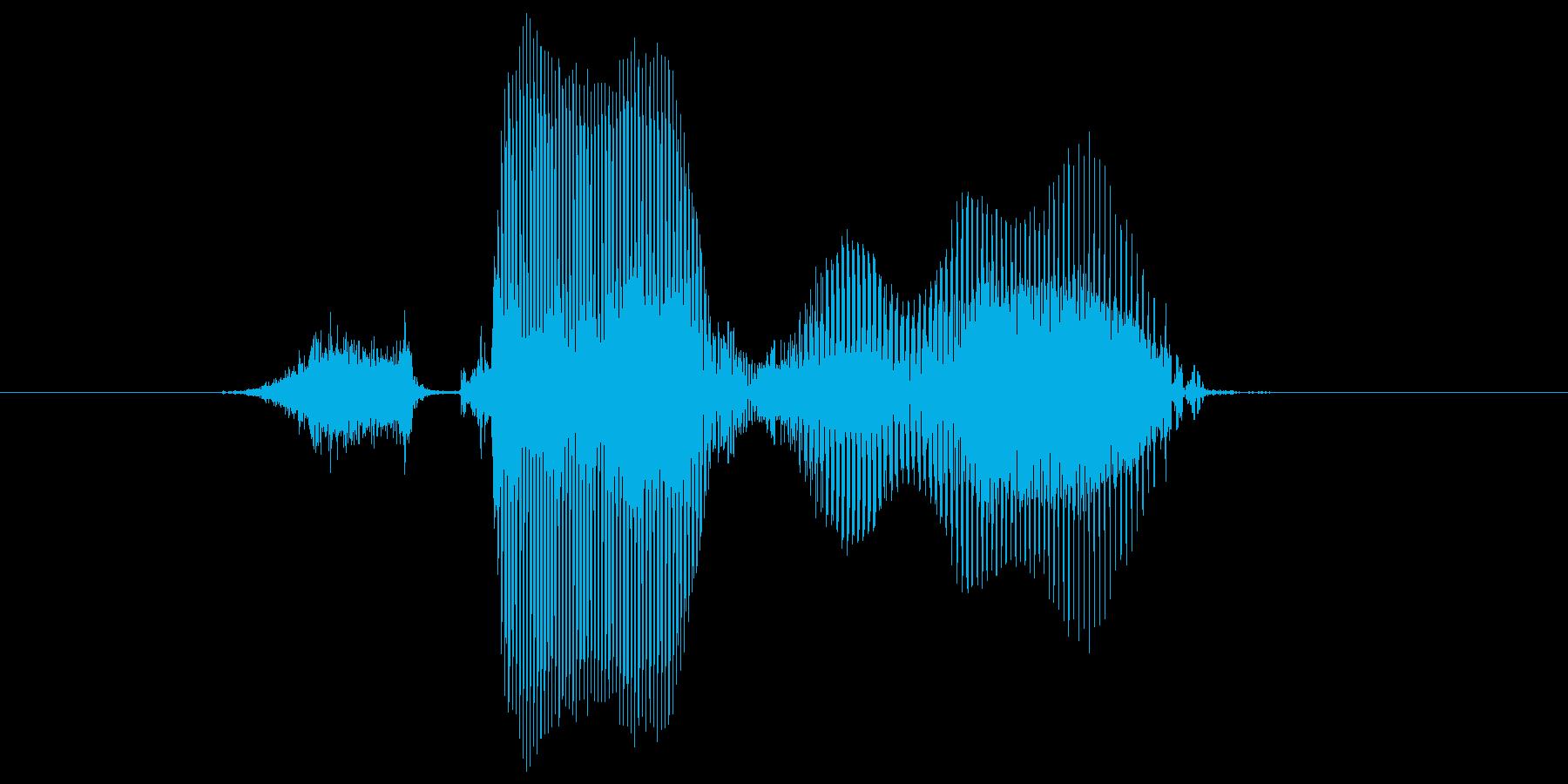 ステージ1(わん)の再生済みの波形