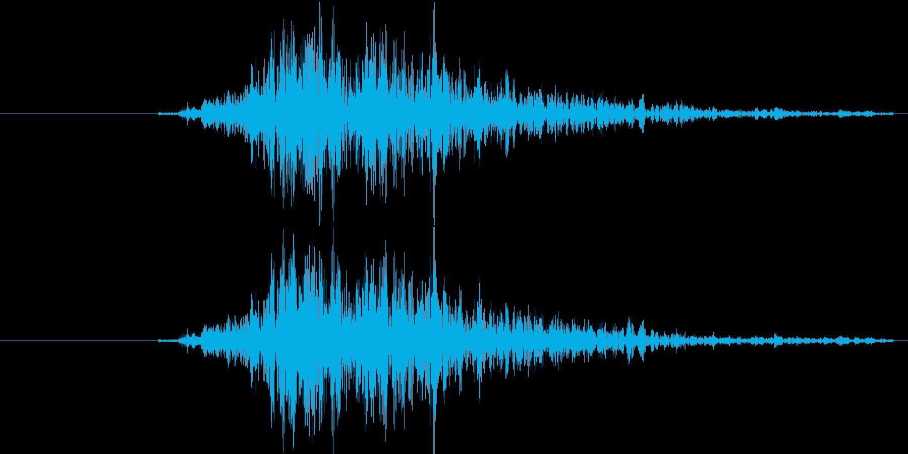 猛獣の唸り声の再生済みの波形