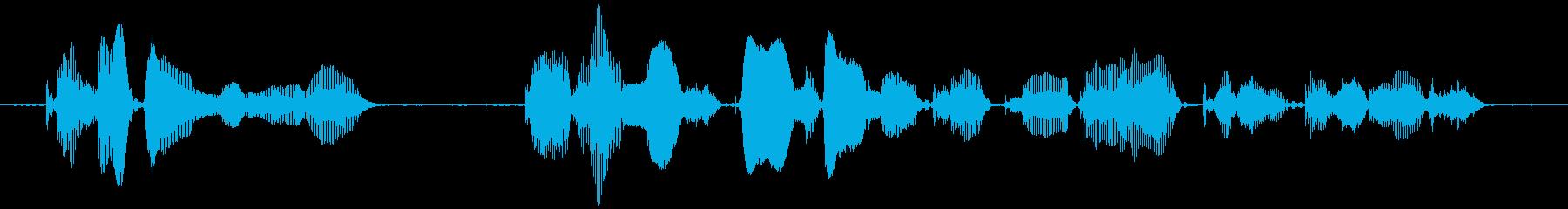 この番組はご覧のスポンサーの提供でお送りの再生済みの波形