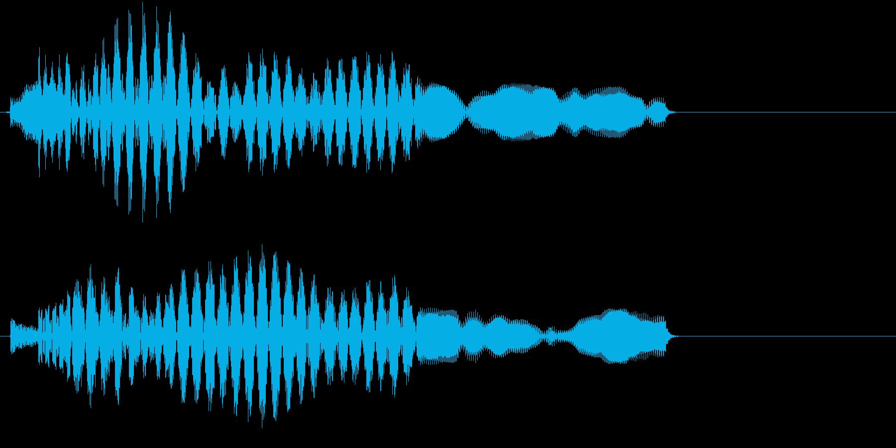 ポロロンンー(サウンドロゴ、決定)の再生済みの波形