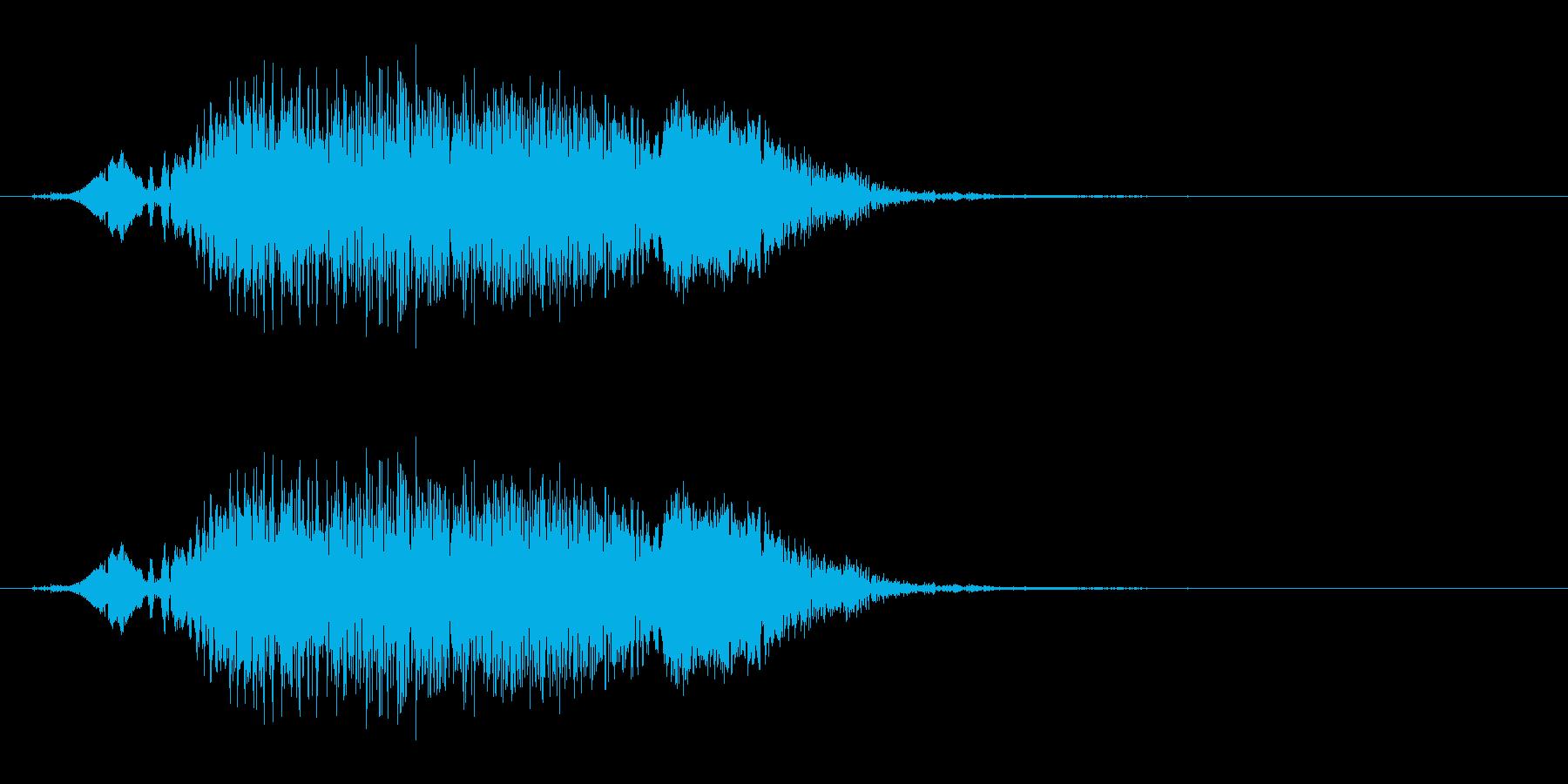 若い女性(複数)の悲鳴「きゃー」の再生済みの波形