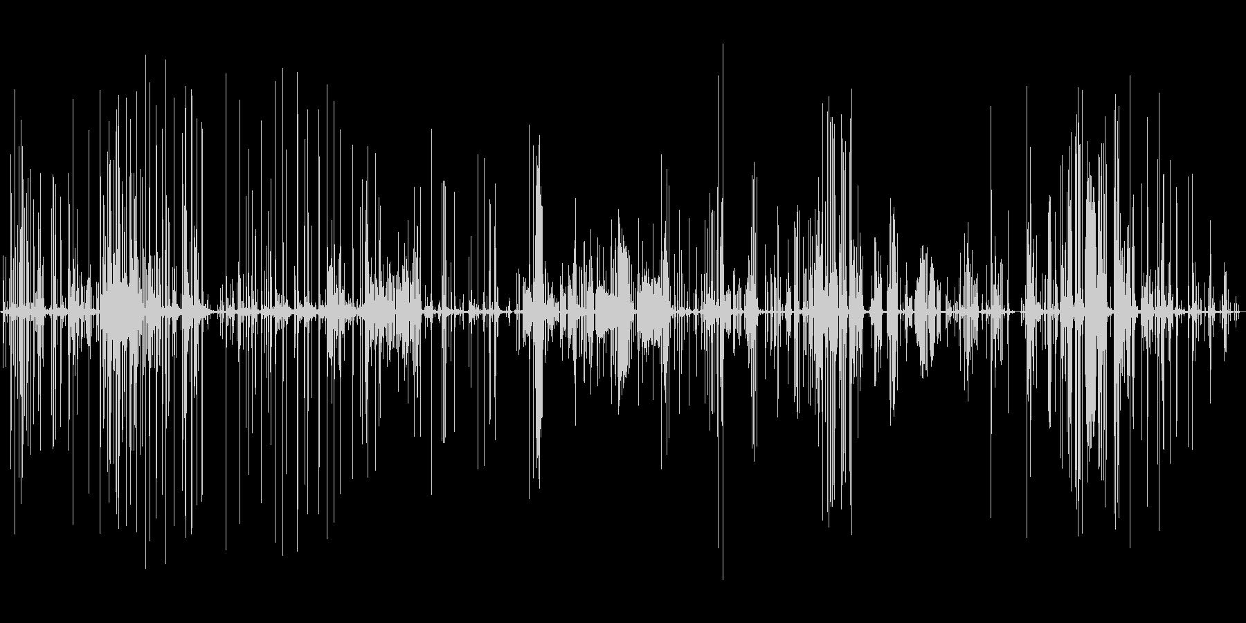 氷る音の未再生の波形