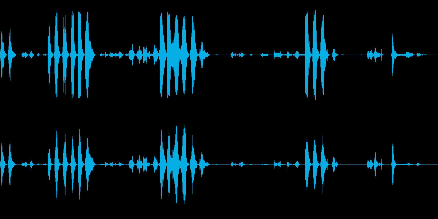 野生の鳥02(複数)の再生済みの波形