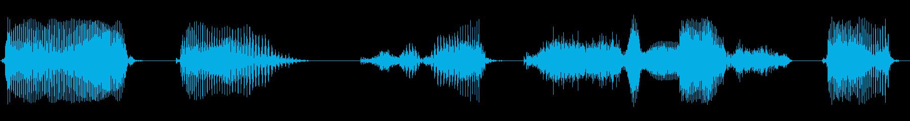 データを記録しましたの再生済みの波形