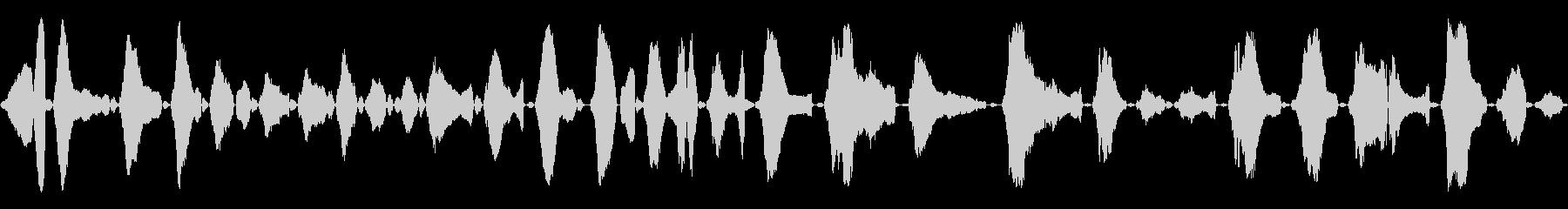 赤ちゃんの泣き声<泣き方 : 強め>の未再生の波形