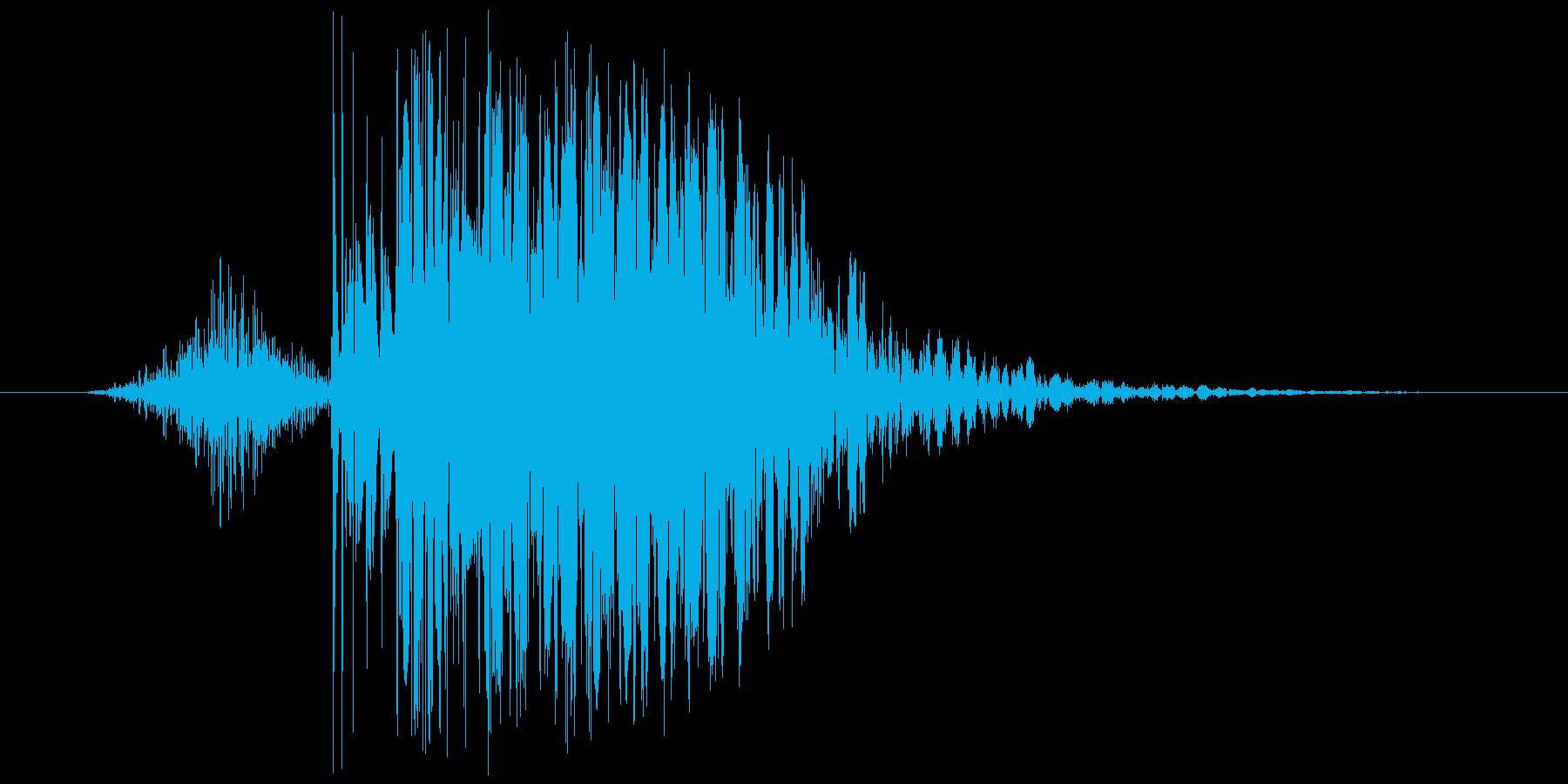 【いわゆるパンチ音】デシ系/デュクシ系の再生済みの波形