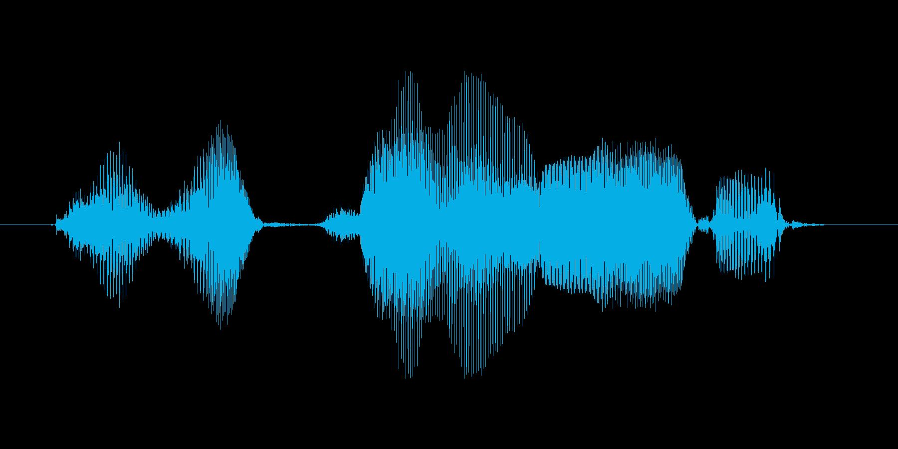 続きを見るの再生済みの波形