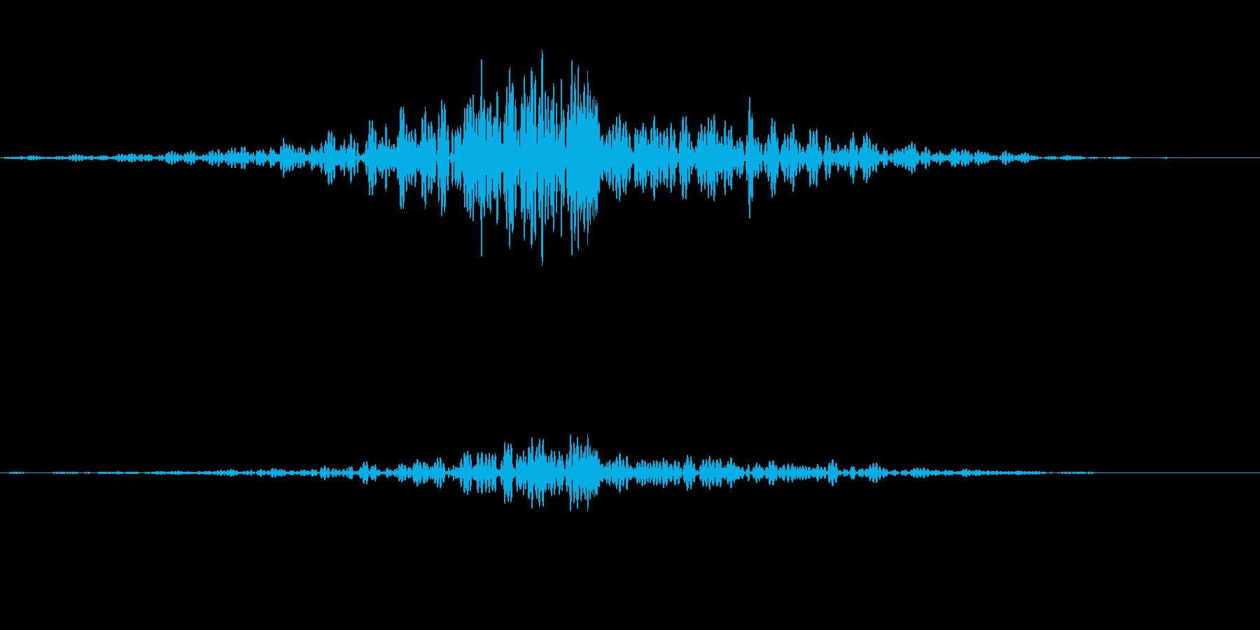 ドーン シュパッの再生済みの波形