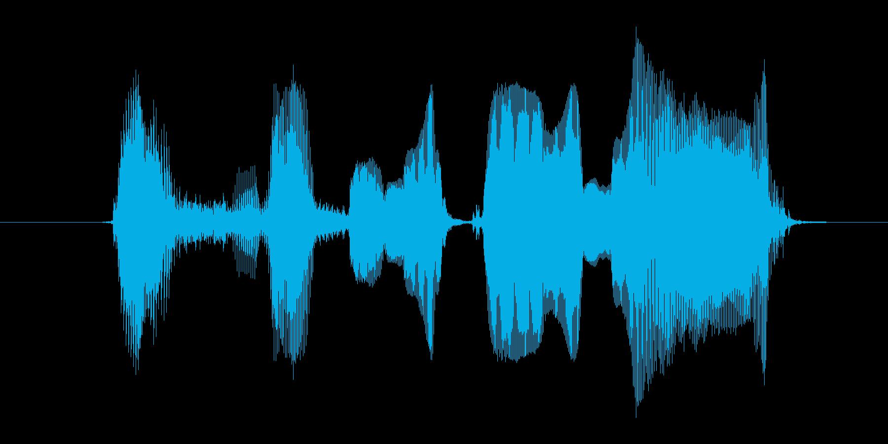 お知らせのコーナーの再生済みの波形