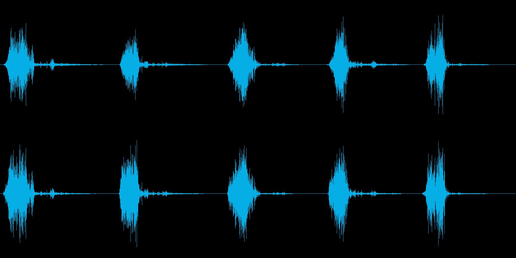 ザッザッザッ(複数回)の再生済みの波形