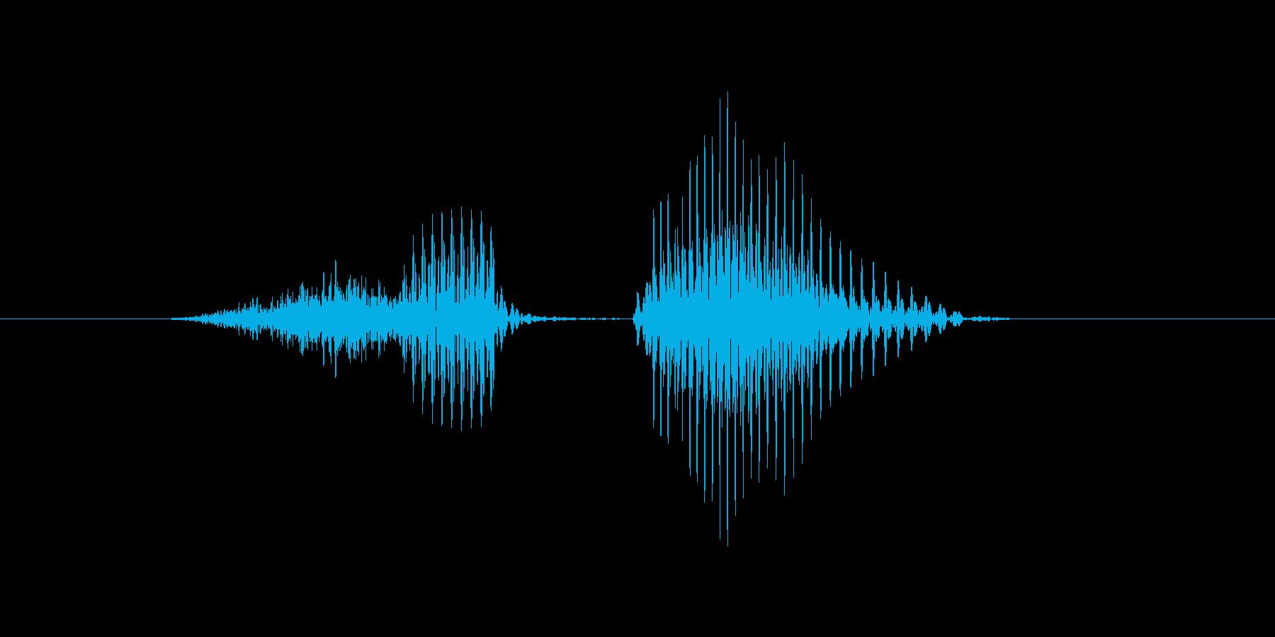 スピンの再生済みの波形