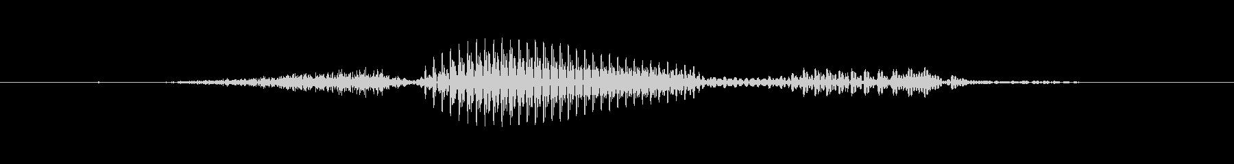 【干支】申の未再生の波形