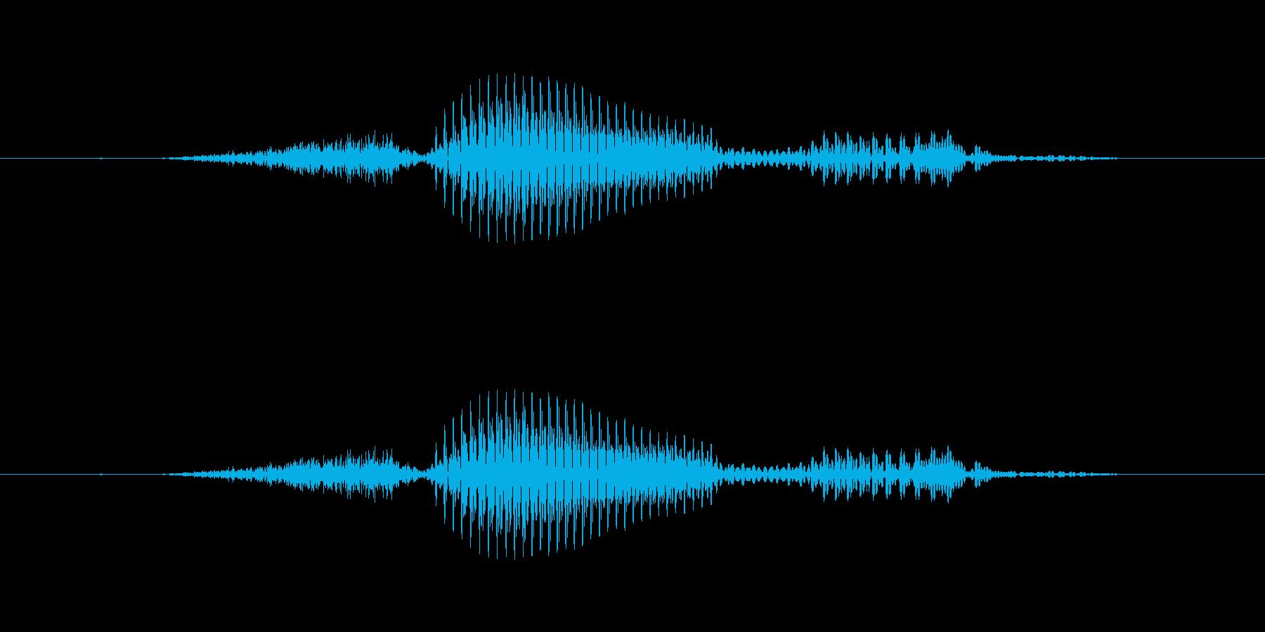 【干支】申の再生済みの波形