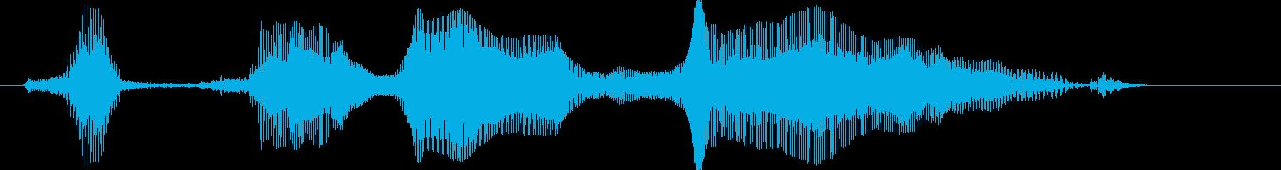 ファイナルラウンドの再生済みの波形