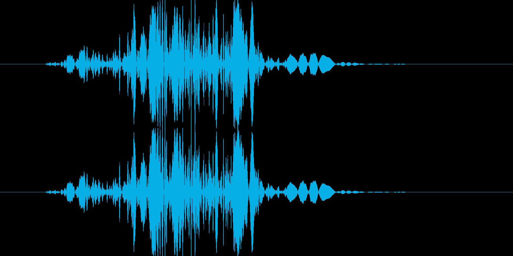 バッ【衝撃、倒れる、羽ばたく】の再生済みの波形