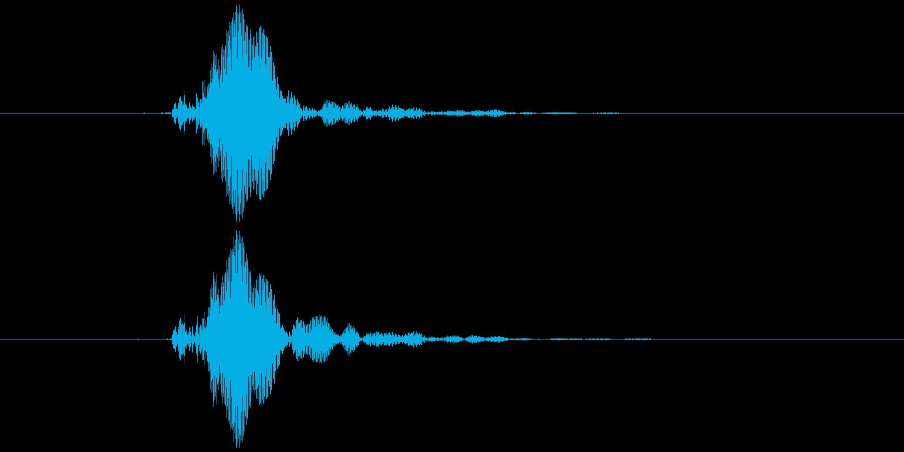 ピコピコハンマー ピッ (低め)の再生済みの波形