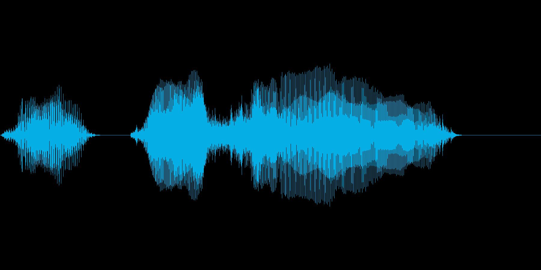 60(ろ↓くじゅう↑)の再生済みの波形