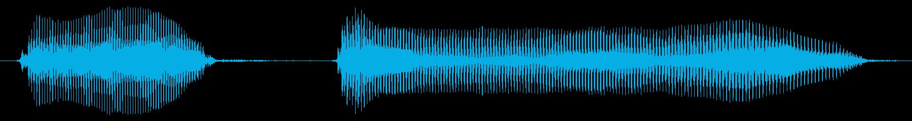 ダウトーの再生済みの波形