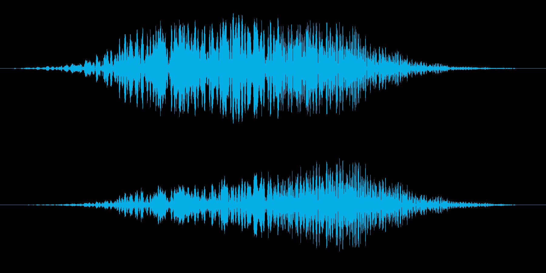 シンセ風の上昇する音の再生済みの波形