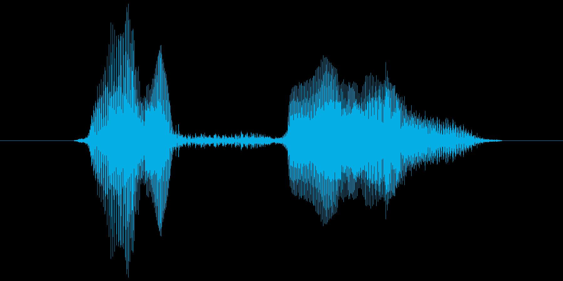 「やっほい!」の再生済みの波形