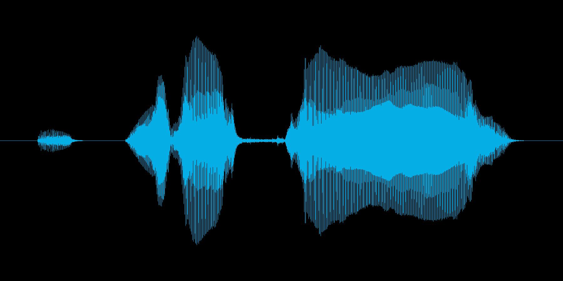 いってらっしゃーいの再生済みの波形