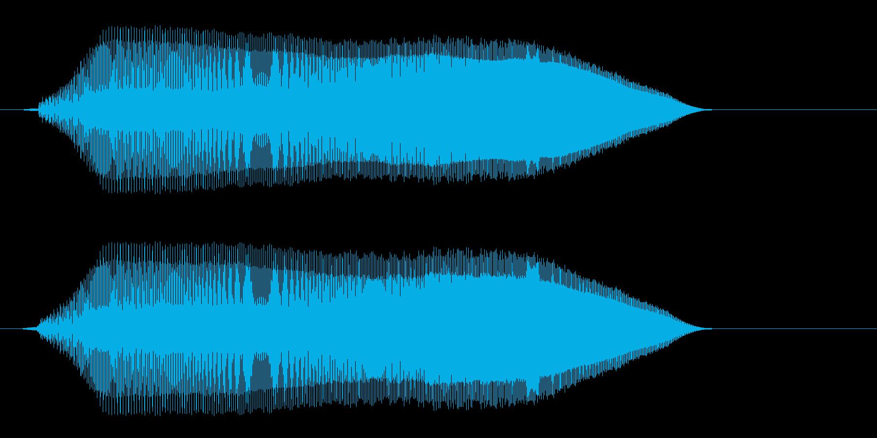 ピョォ〜イ?(甲高く澄んだ警告音)の再生済みの波形