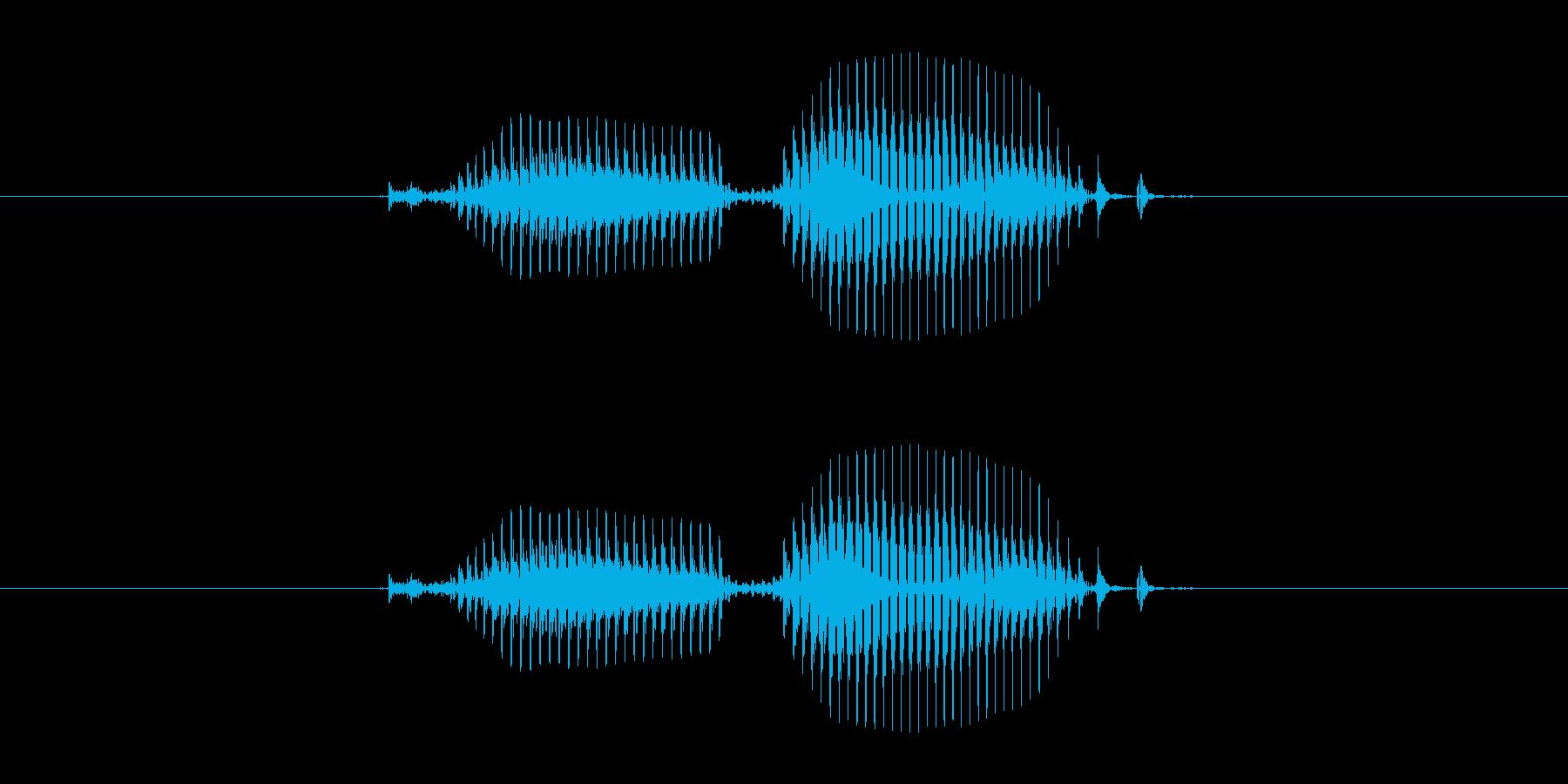 【干支】寅の再生済みの波形