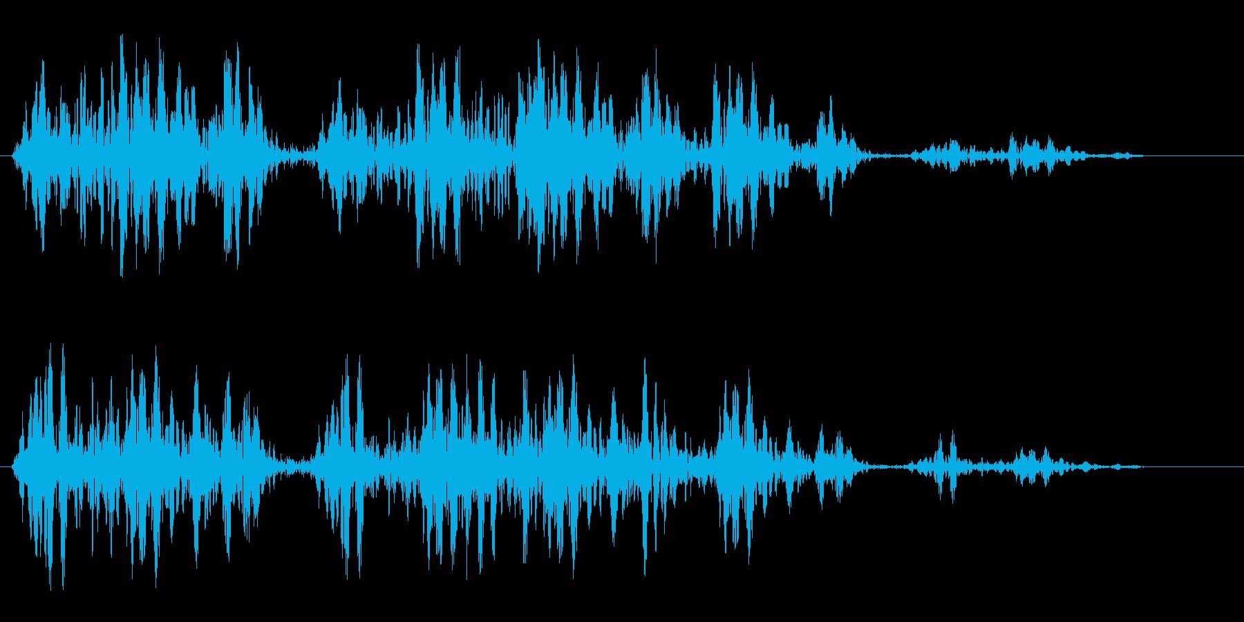 シュワンシュワン(回転音)の再生済みの波形