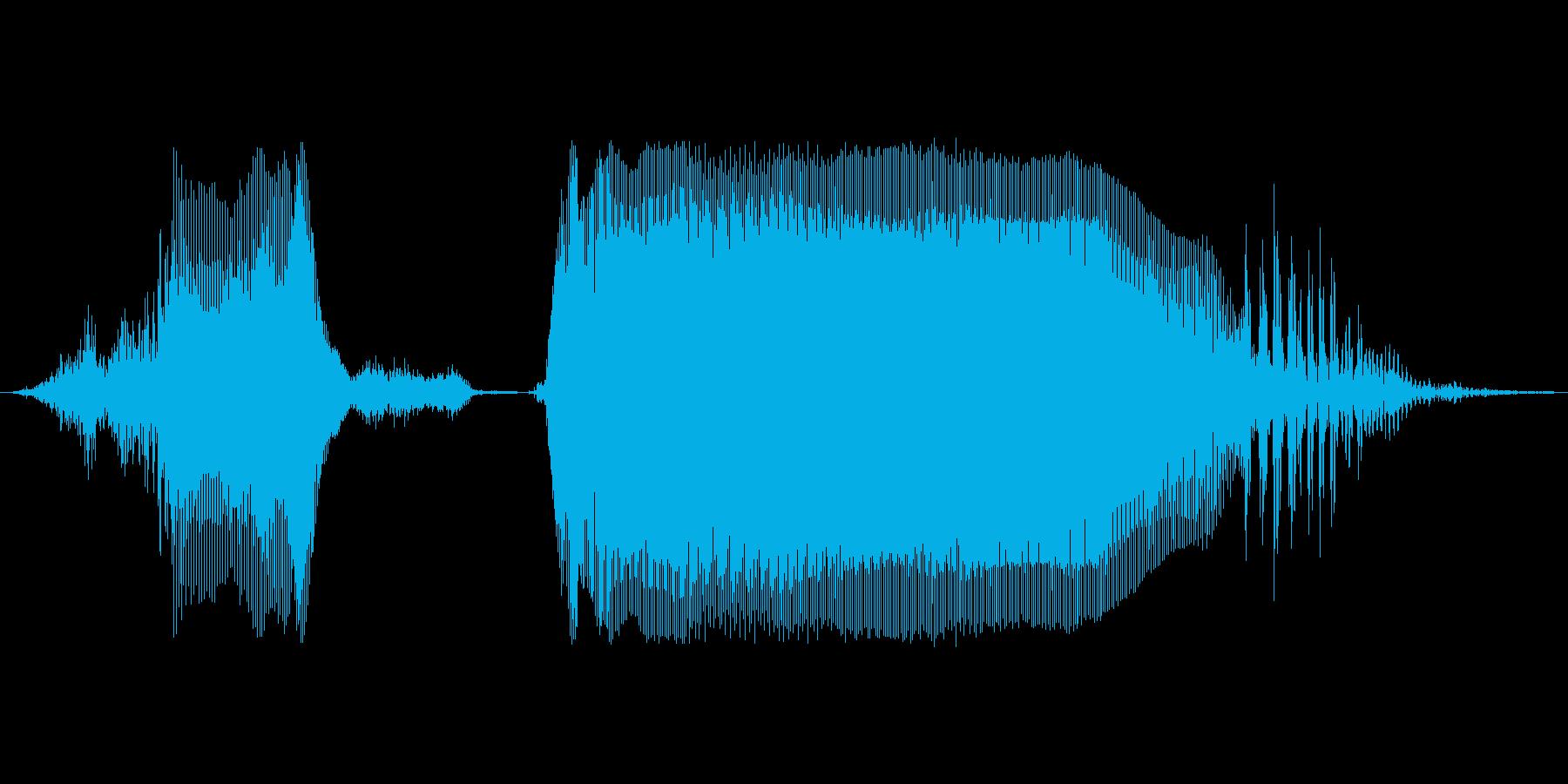 チェストー!の再生済みの波形