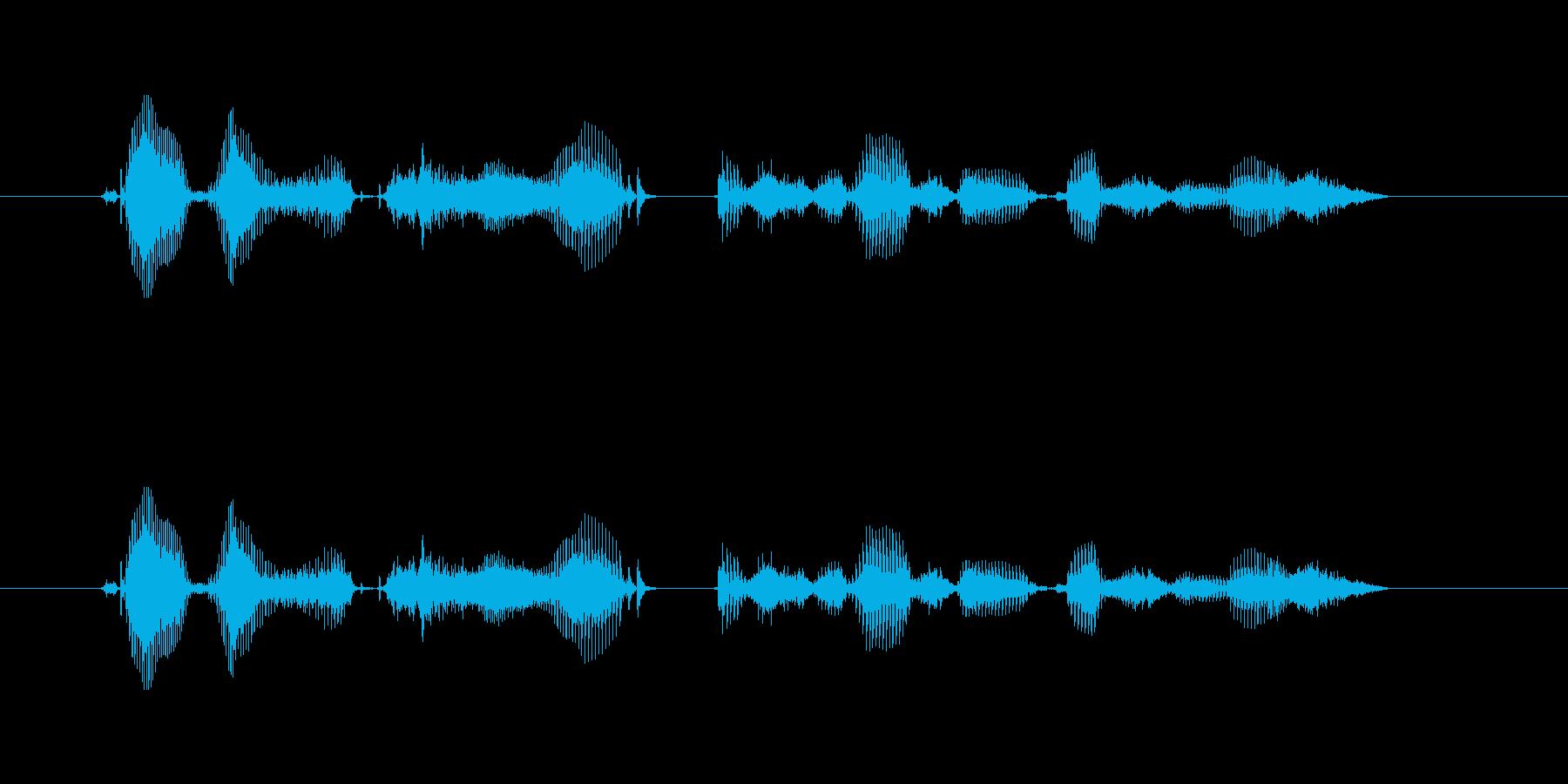 【時報・時間】午後8時を、お知らせいた…の再生済みの波形